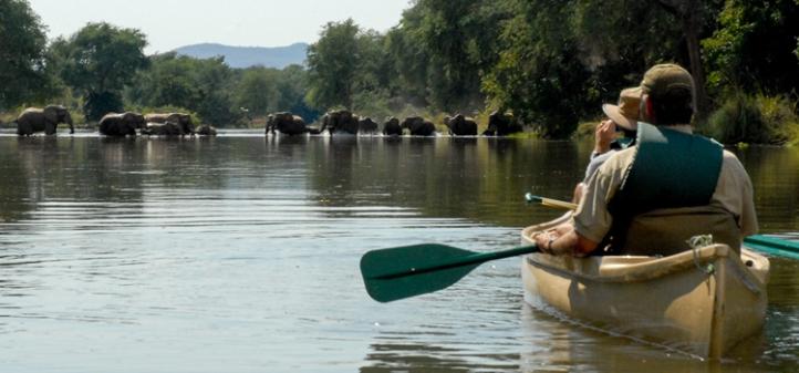 safari zambezi canoa a reveure