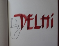 Arribada a Delhi