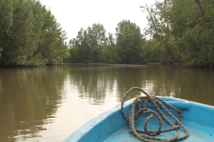 Bao Bolong Wetland reserve.JPG