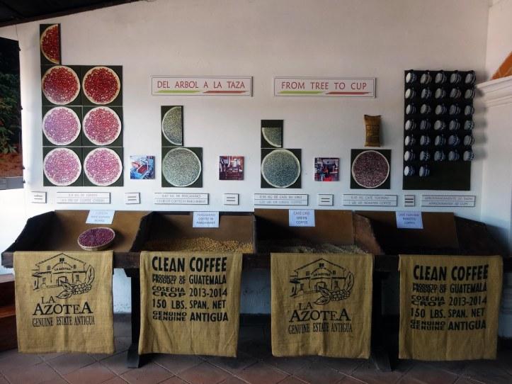 antigua-museo-cafe