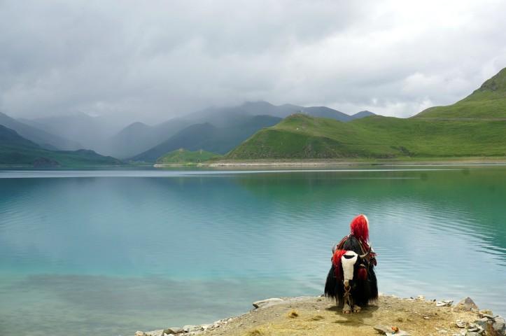 Vistes del llac Yamdrok (4.441m)